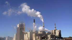 4 Ways Pulp and Paper Production Can be Made Cost-Effective