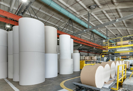 Pulp and Paper Industry in the Digital Age