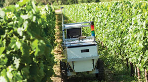 How Robots and Machine Vision Enhances Wine and Agricultural Operations